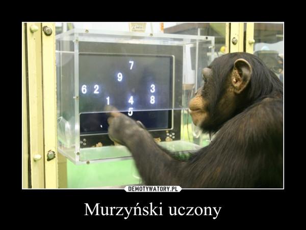 Murzyński uczony –