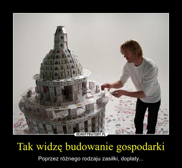Tak widzę budowanie gospodarki – Poprzez różnego rodzaju zasiłki, dopłaty...