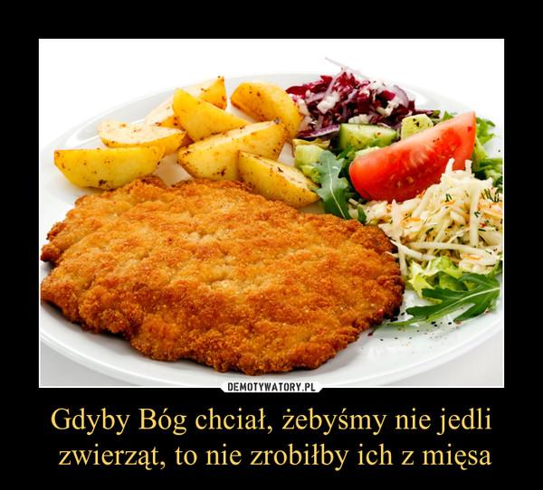 Gdyby Bóg chciał, żebyśmy nie jedli zwierząt, to nie zrobiłby ich z mięsa –