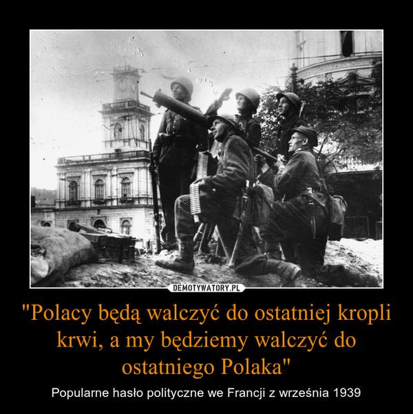 Dlaczego fajfokloki biją tylko Polaków a boją się arabów.