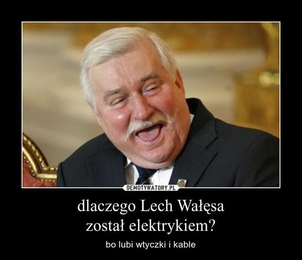 dlaczego Lech Wałęsazostał elektrykiem? – bo lubi wtyczki i kable