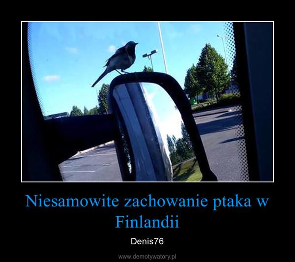 Niesamowite zachowanie ptaka w Finlandii – Denis76