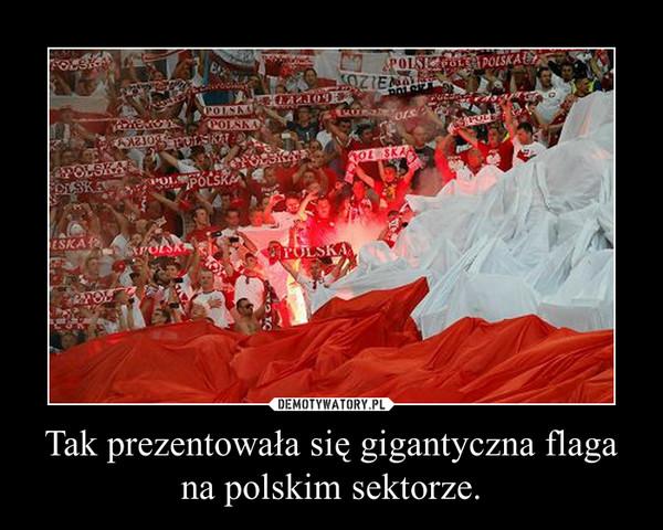 Tak prezentowała się gigantyczna flaga na polskim sektorze. –