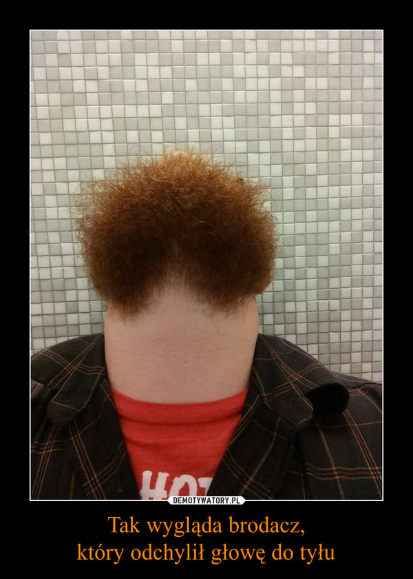 Tak wygląda brodacz,który odchylił głowę do tyłu –
