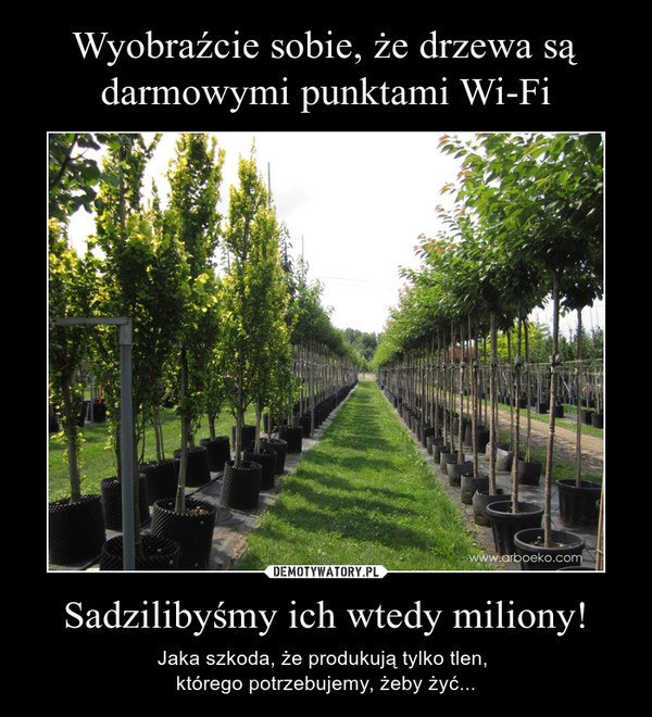 Sadzilibyśmy ich wtedy miliony! – Jaka szkoda, że produkują tylko tlen, którego potrzebujemy, żeby żyć...