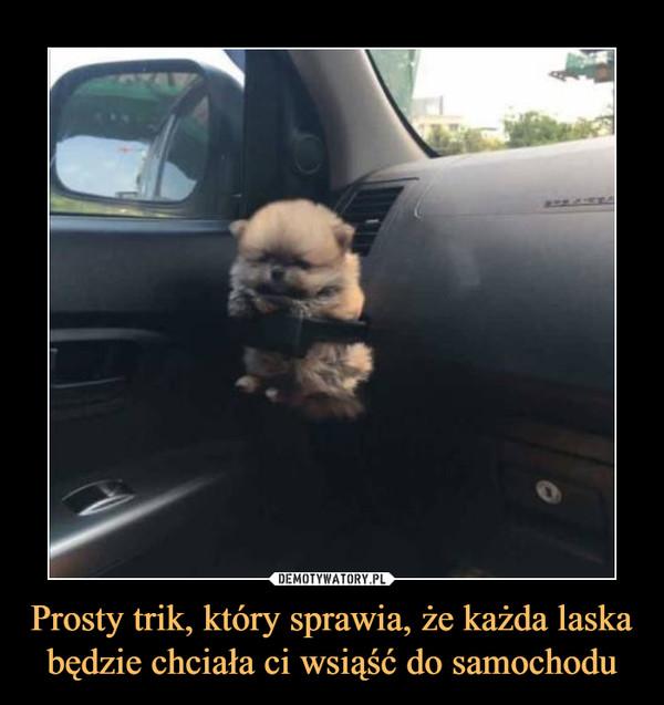 Prosty trik, który sprawia, że każda laska będzie chciała ci wsiąść do samochodu –