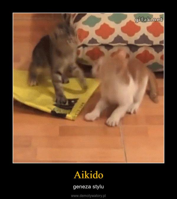 Aikido – geneza stylu