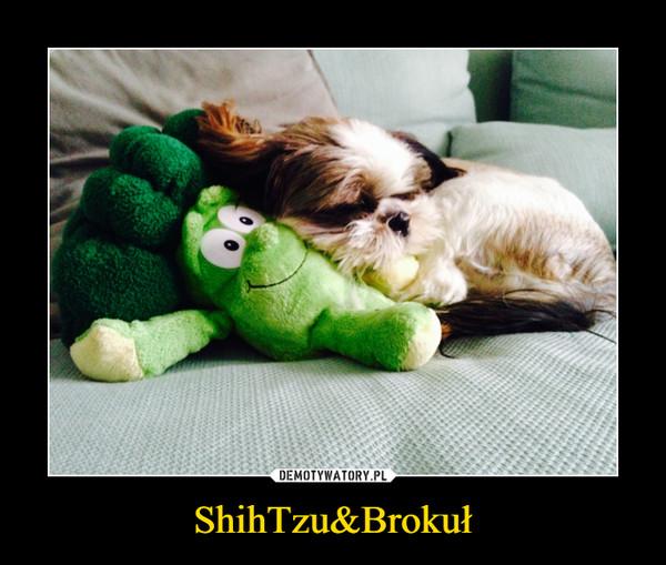 ShihTzu&Brokuł –