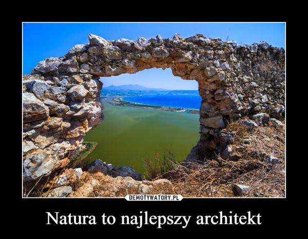 Natura to najlepszy architekt –