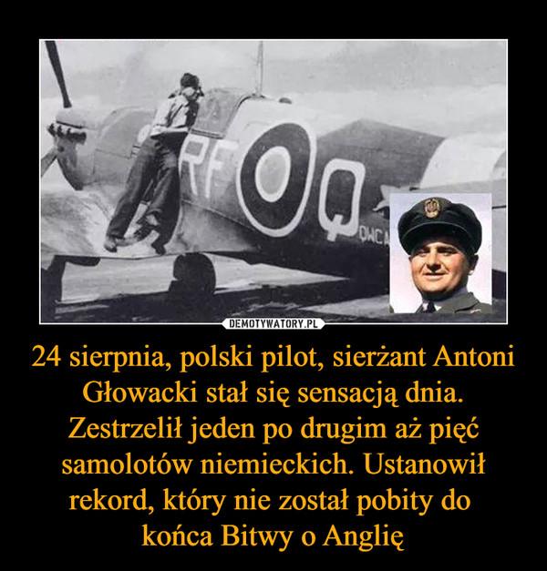 24 sierpnia, polski pilot, sierżant Antoni Głowacki stał się sensacją dnia. Zestrzelił jeden po drugim aż pięć samolotów niemieckich. Ustanowił rekord, który nie został pobity do końca Bitwy o Anglię –