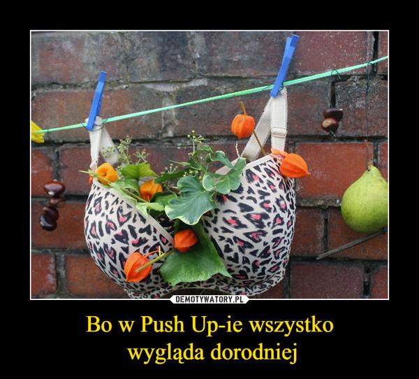 Bo w Push Up-ie wszystko wygląda dorodniej –