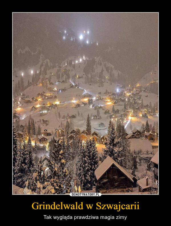 Grindelwald w Szwajcarii – Tak wygląda prawdziwa magia zimy