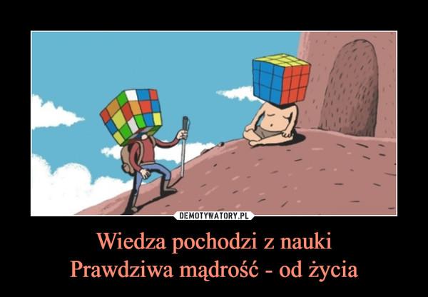 Wiedza pochodzi z naukiPrawdziwa mądrość - od życia –