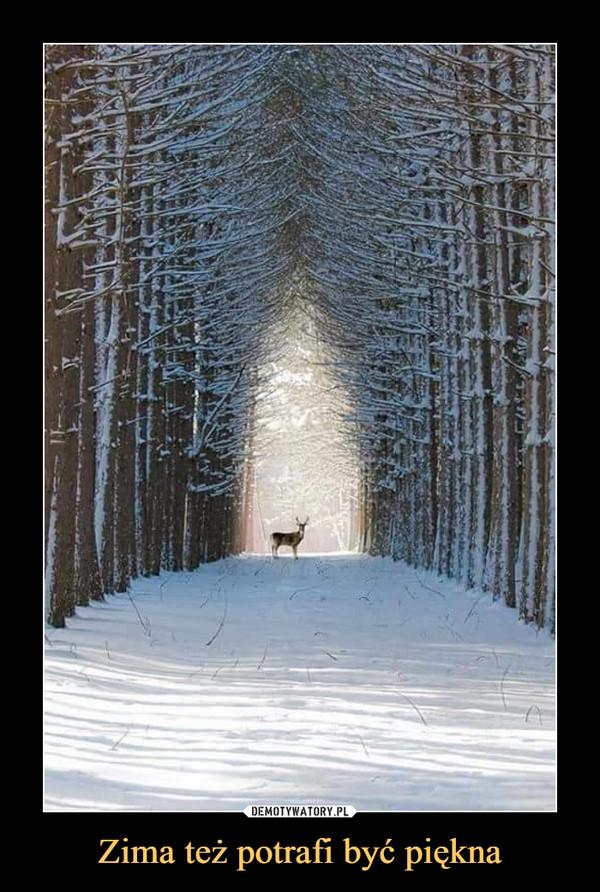 Zima też potrafi być piękna –