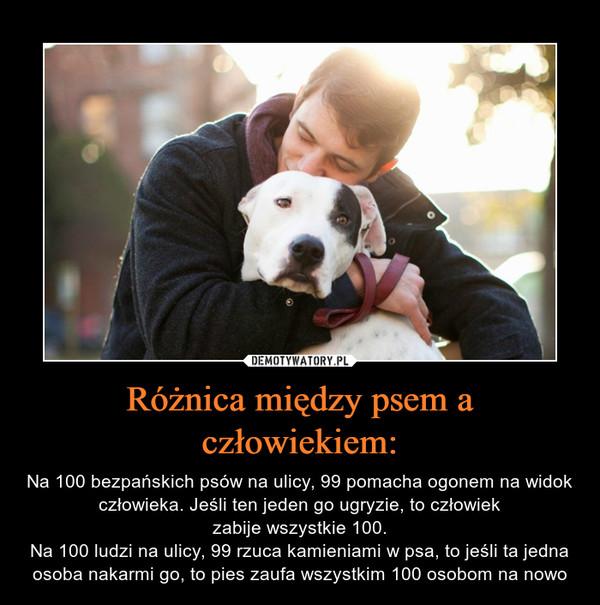 Różnica między psem a człowiekiem: – Na 100 bezpańskich psów na ulicy, 99 pomacha ogonem na widok człowieka. Jeśli ten jeden go ugryzie, to człowiek zabije wszystkie 100. Na 100 ludzi na ulicy, 99 rzuca kamieniami w psa, to jeśli ta jedna osoba nakarmi go, to pies zaufa wszystkim 100 osobom na nowo
