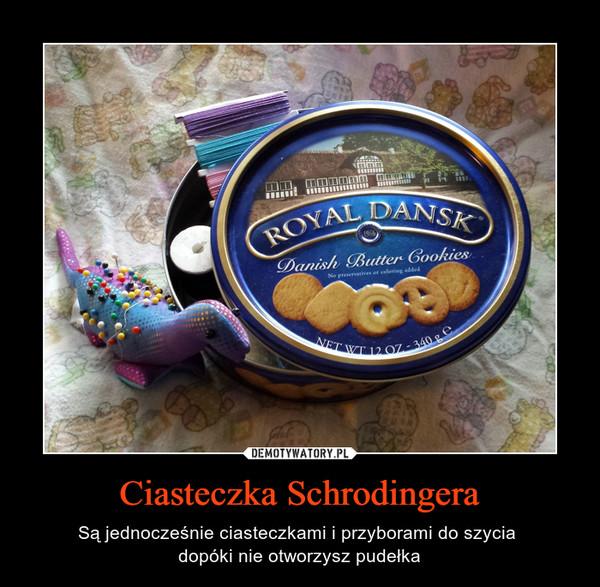 Ciasteczka Schrodingera – Są jednocześnie ciasteczkami i przyborami do szycia dopóki nie otworzysz pudełka