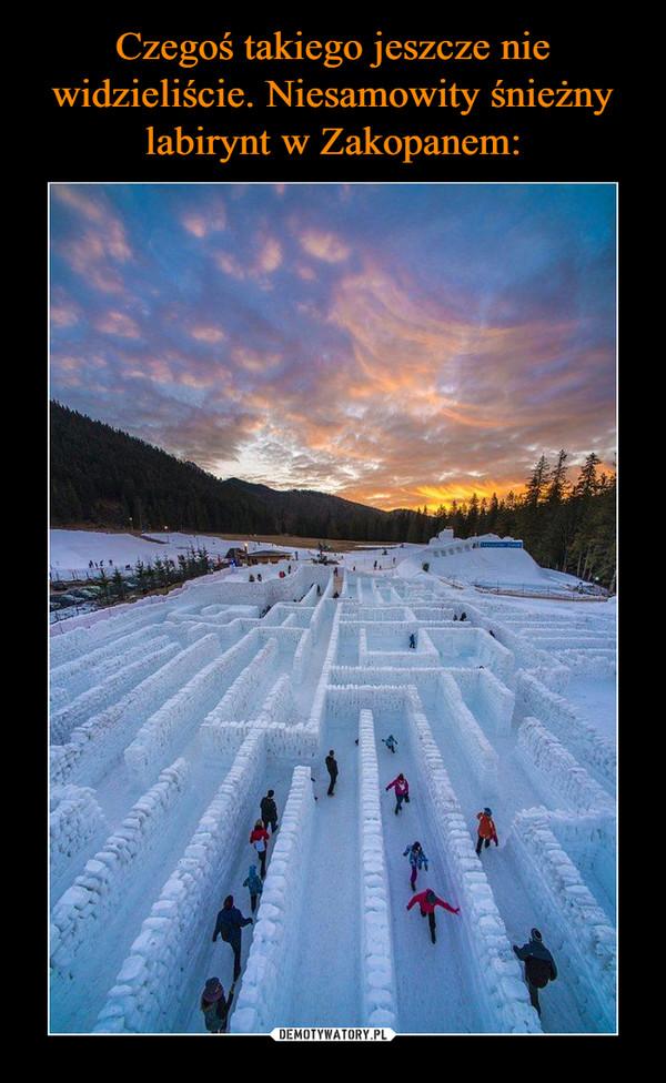 Czegoś takiego jeszcze nie widzieliście. Niesamowity śnieżny labirynt w Zakopanem: