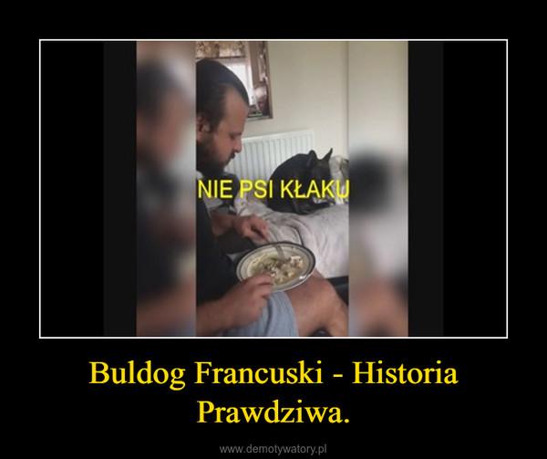 Buldog Francuski - Historia Prawdziwa. –