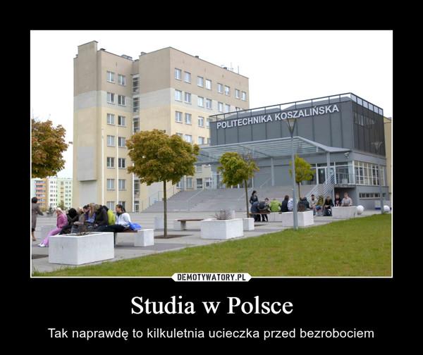 Studia w Polsce – Tak naprawdę to kilkuletnia ucieczka przed bezrobociem