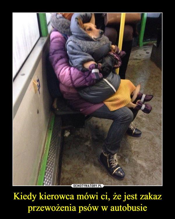 Kiedy kierowca mówi ci, że jest zakaz przewożenia psów w autobusie –