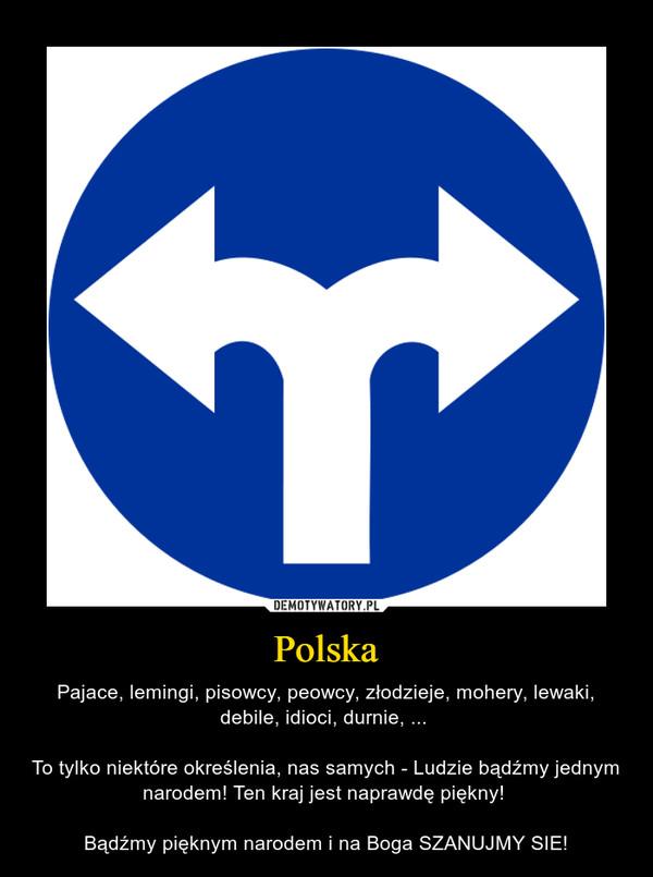 Polska – Pajace, lemingi, pisowcy, peowcy, złodzieje, mohery, lewaki, debile, idioci, durnie, ... To tylko niektóre określenia, nas samych - Ludzie bądźmy jednym narodem! Ten kraj jest naprawdę piękny! Bądźmy pięknym narodem i na Boga SZANUJMY SIE!