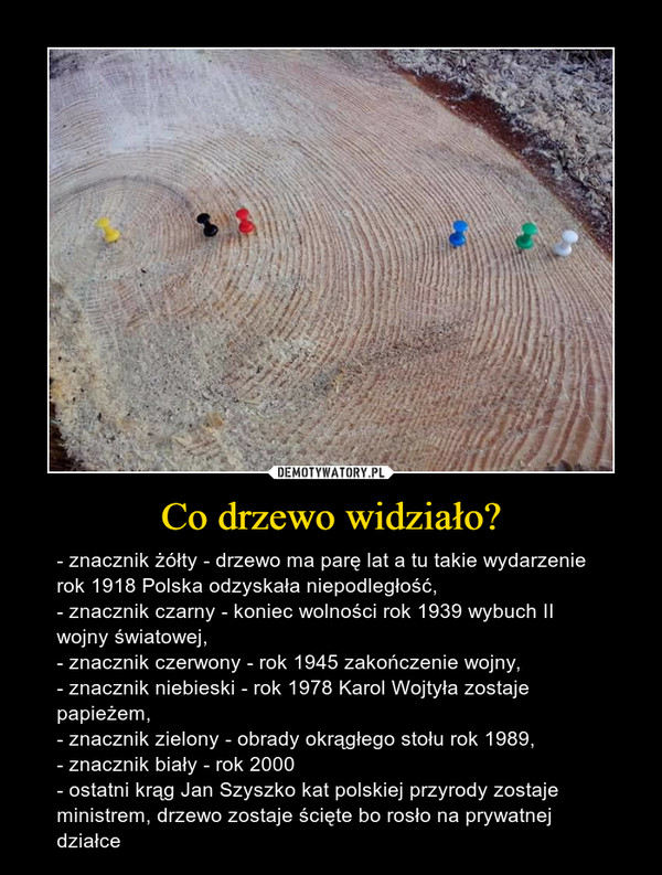 Co drzewo widziało? – - znacznik żółty - drzewo ma parę lat a tu takie wydarzenie rok 1918 Polska odzyskała niepodległość,- znacznik czarny - koniec wolności rok 1939 wybuch II wojny światowej,- znacznik czerwony - rok 1945 zakończenie wojny,- znacznik niebieski - rok 1978 Karol Wojtyła zostaje papieżem,- znacznik zielony - obrady okrągłego stołu rok 1989,- znacznik biały - rok 2000- ostatni krąg Jan Szyszko kat polskiej przyrody zostaje ministrem, drzewo zostaje ścięte bo rosło na prywatnej działce