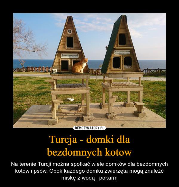 Turcja - domki dlabezdomnych kotow – Na terenie Turcji można spotkać wiele domków dla bezdomnych kotów i psów. Obok każdego domku zwierzęta mogą znaleźć miskę z wodą i pokarm