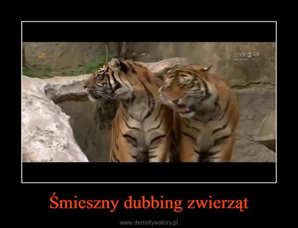 Śmieszny dubbing zwierząt –