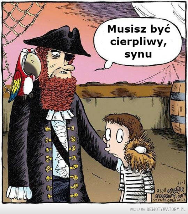 Pirat –  musisz być cierpliwy synu