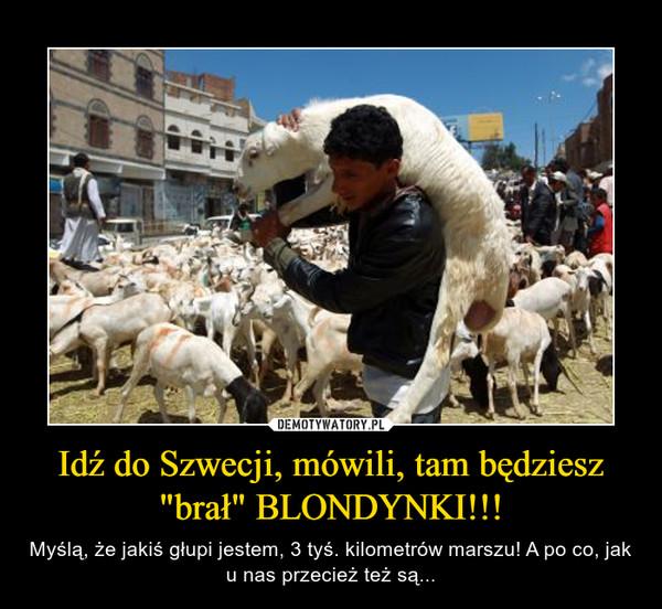 """Idź do Szwecji, mówili, tam będziesz """"brał"""" BLONDYNKI!!! – Myślą, że jakiś głupi jestem, 3 tyś. kilometrów marszu! A po co, jak u nas przecież też są..."""