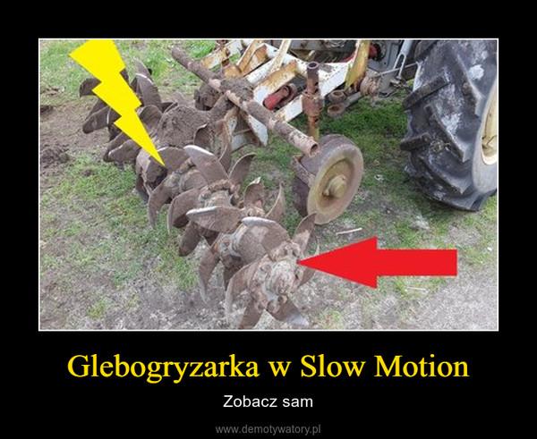 Glebogryzarka w Slow Motion – Zobacz sam