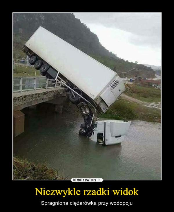 Niezwykle rzadki widok – Spragniona ciężarówka przy wodopoju