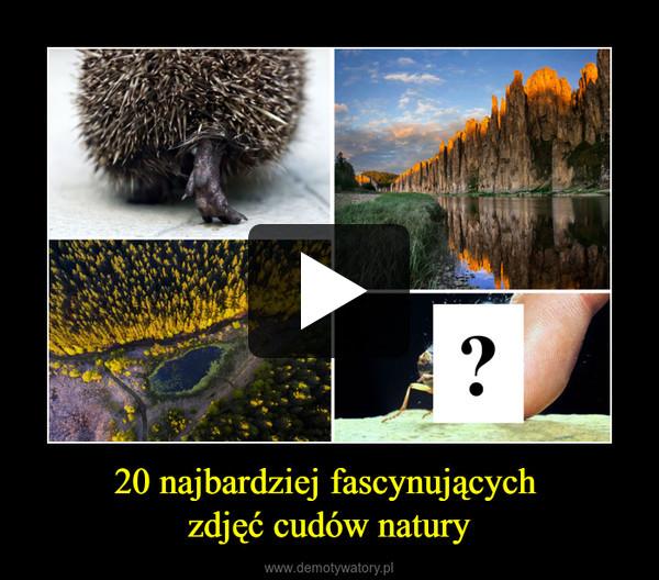 20 najbardziej fascynujących zdjęć cudów natury –