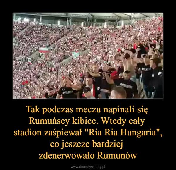 """Tak podczas meczu napinali się Rumuńscy kibice. Wtedy cały stadion zaśpiewał """"Ria Ria Hungaria"""",co jeszcze bardziej zdenerwowało Rumunów –"""