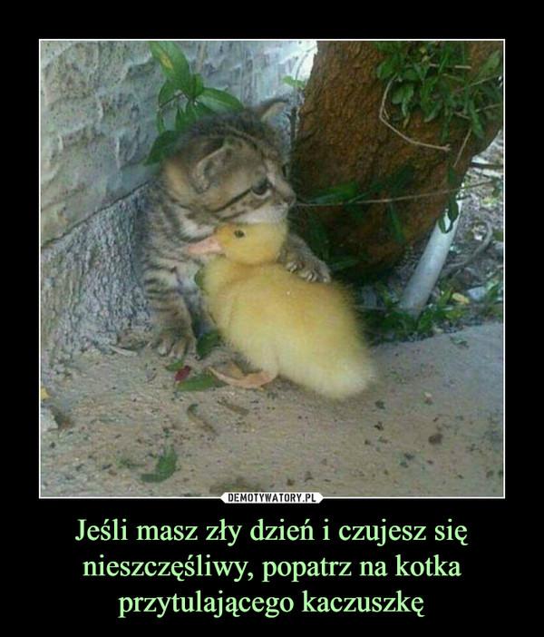 Jeśli masz zły dzień i czujesz się nieszczęśliwy, popatrz na kotka przytulającego kaczuszkę –