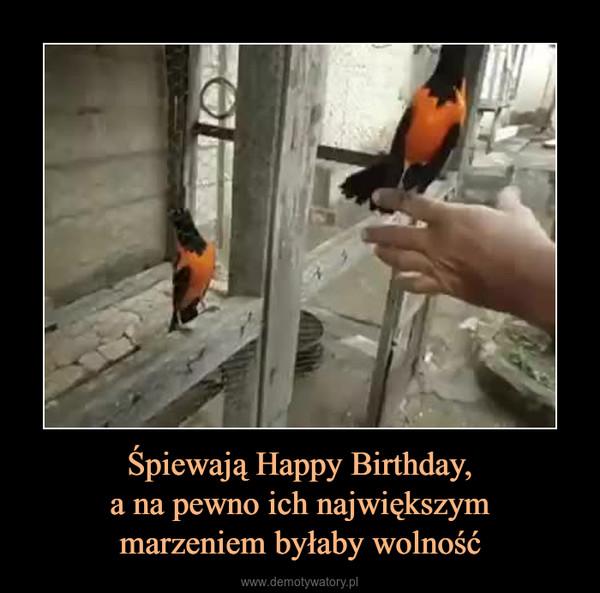 Śpiewają Happy Birthday,a na pewno ich największymmarzeniem byłaby wolność –