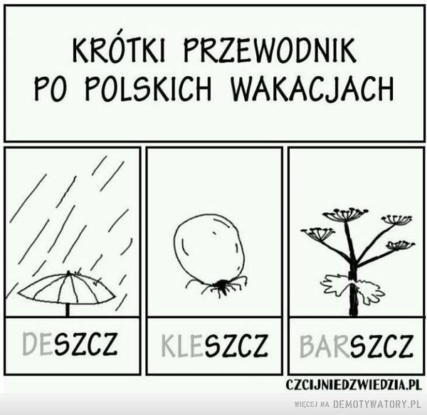 Wakacje po polsku –