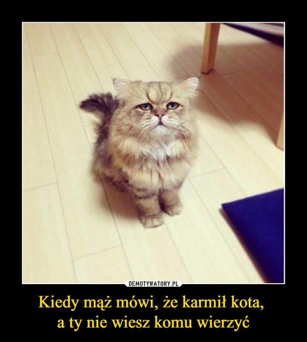 Kiedy mąż mówi, że karmił kota, a ty nie wiesz komu wierzyć –