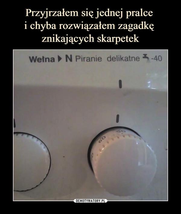 –  Wełna N Piranie delikatne -40