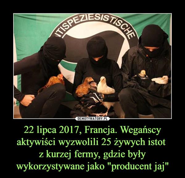 """22 lipca 2017, Francja. Wegańscy aktywiści wyzwolili 25 żywych istot z kurzej fermy, gdzie były wykorzystywane jako """"producent jaj"""" –"""