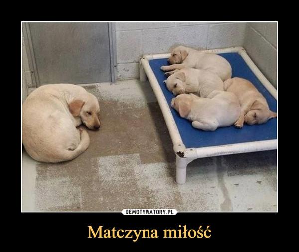 Matczyna miłość –