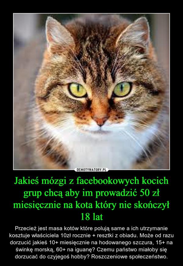 Jakieś mózgi z facebookowych kocich grup chcą aby im prowadzić 50 zł miesięcznie na kota który nie skończył 18 lat – Przecież jest masa kotów które polują same a ich utrzymanie kosztuje właściciela 10zł rocznie + resztki z obiadu. Może od razu dorzucić jakieś 10+ miesięcznie na hodowanego szczura, 15+ na świnkę morską, 60+ na iguanę? Czemu państwo miałoby się dorzucać do czyjegoś hobby? Roszczeniowe społeczeństwo.