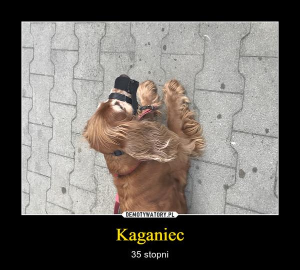 Kaganiec – 35 stopni