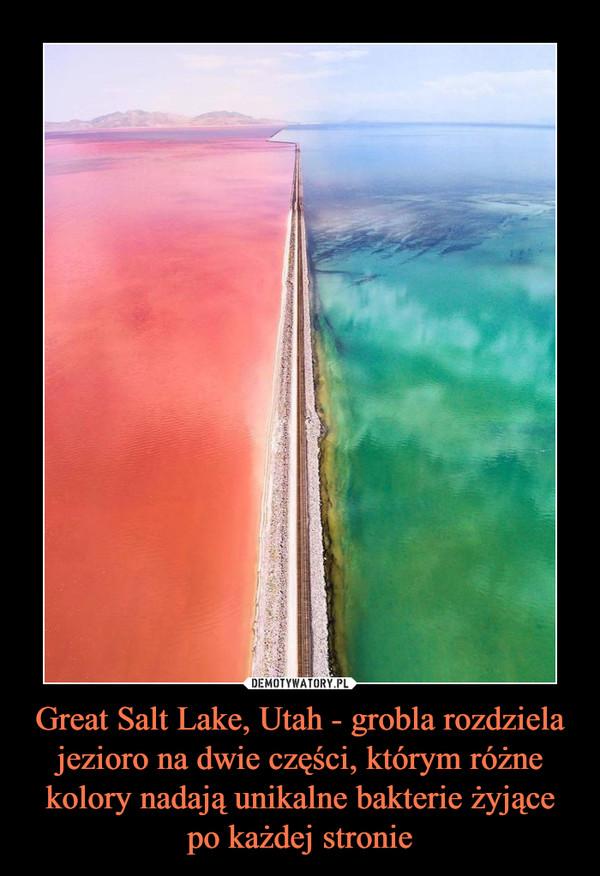 Great Salt Lake, Utah - grobla rozdziela jezioro na dwie części, którym różne kolory nadają unikalne bakterie żyjące po każdej stronie –