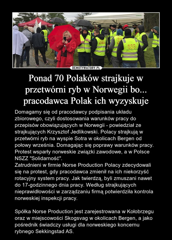 """Ponad 70 Polaków strajkuje w przetwórni ryb w Norwegii bo... pracodawca Polak ich wyzyskuje – Domagamy się od pracodawcy podpisania układu zbiorowego, czyli dostosowania warunków pracy do przepisów obowiązujących w Norwegii - powiedział ze strajkujących Krzysztof Jedlikowski. Polacy strajkują w przetwórni ryb na wyspie Sotra w okolicach Bergen od połowy września. Domagając się poprawy warunków pracy. Protest wsparły norweskie związki zawodowe, a w Polsce NSZZ """"Solidarność"""".Zatrudnieni w firmie Norse Production Polacy zdecydowali się na protest, gdy pracodawca zmienił na ich niekorzyść rotacyjny system pracy. Jak twierdzą, byli zmuszani nawet do 17-godzinnego dnia pracy. Według strajkujących nieprawidłowości w zarządzaniu firmą potwierdziła kontrola norweskiej inspekcji pracy.Spółka Norse Production jest zarejestrowana w Kołobrzegu oraz w miejscowości Skogsvag w okolicach Bergen, a jako pośrednik świadczy usługi dla norweskiego koncernu rybnego Sekkingstad AS."""