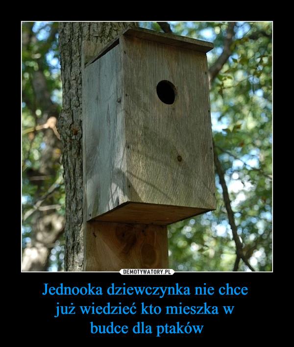 Jednooka dziewczynka nie chce już wiedzieć kto mieszka w budce dla ptaków –