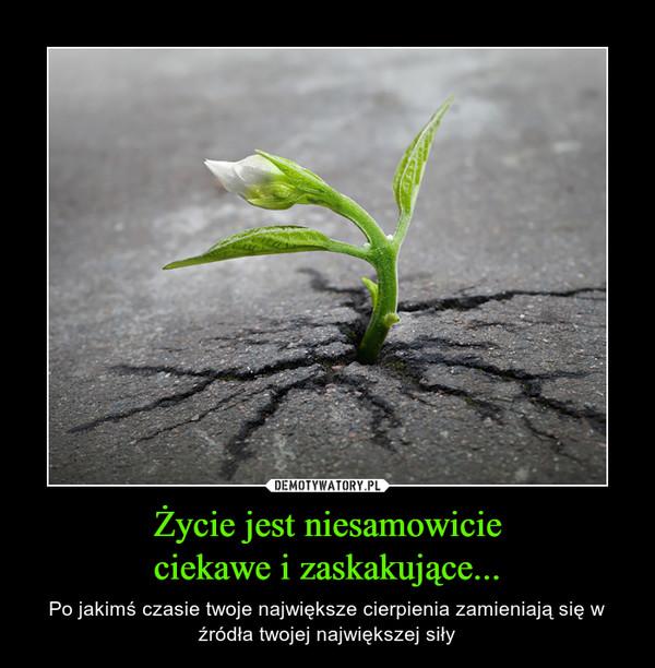 Życie jest niesamowicieciekawe i zaskakujące... – Po jakimś czasie twoje największe cierpienia zamieniają się w źródła twojej największej siły