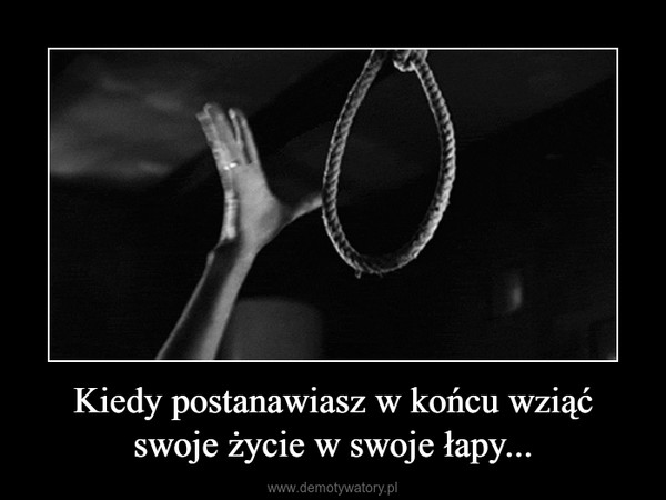 Kiedy postanawiasz w końcu wziąć swoje życie w swoje łapy... –