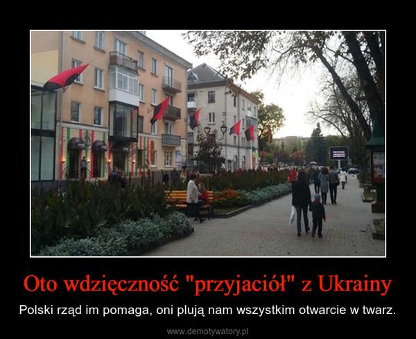 """Oto wdzięczność """"przyjaciół"""" z Ukrainy – Polski rząd im pomaga, oni plują nam wszystkim otwarcie w twarz."""
