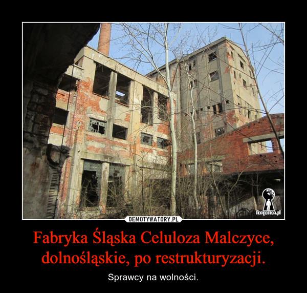 Fabryka Śląska Celuloza Malczyce, dolnośląskie, po restrukturyzacji. – Sprawcy na wolności.